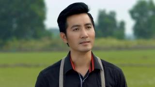 Thương Lại Càng Thương - Nguyễn Phi Hùng