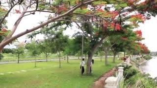Lưu Bút Ngày Xanh - Huỳnh Thật