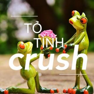 Lời Tỏ Tình Dành Cho Crush - Various Artists