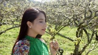 Ly Rượu Mừng - Kiwi Ngô Mai Trang