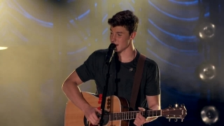 Life Of The Party (Live At The Greek Theatre) - Shawn Mendes