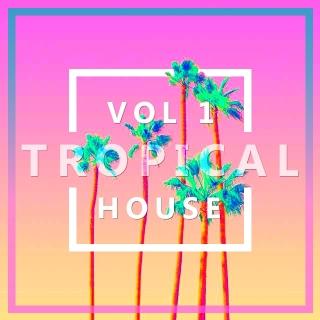 Tuyển Tập Nhạc Tropical House (Vol.1) - Various Artists