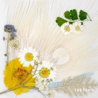 White Night - Taeyang