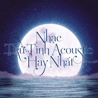 Nhạc Trữ Tình Acoustic Hay Nhất - Various Artists