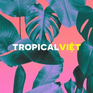 Những Bài Hát Tropical Việt Hay Nhất - Various Artists