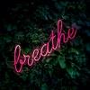 Trong Từng Nhịp Thở - Various Artists