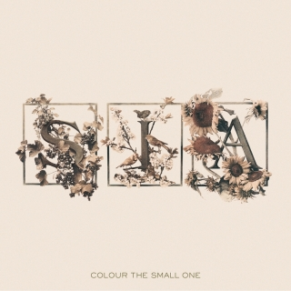 Colour The Small One - Sia