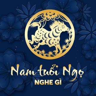 Nam Tuổi Ngọ Nghe Gì? - Various Artists