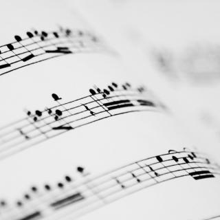 Những Bản Nhạc Không Lời Piano Hay Nhất - Various Artists