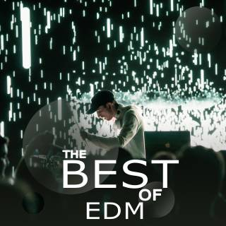 The Best Of EDM - Various Artists