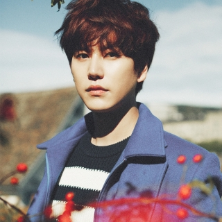 Kyu Hyun (Super Junior)
