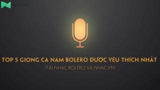 Top 5 Giọng Ca Nam Bolero Được Yêu Thích Nhất - Various Artists