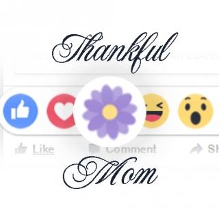 Những Bài Hát Thay Lời Cảm Ơn Mẹ - Various Artists