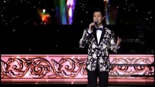 Đời Có Bao Nhiêu Ngày Vui (Liveshow) - Quang Dũng
