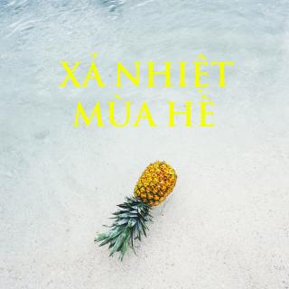 XẢ NHIỆT MÙA HÈ - Various Artists
