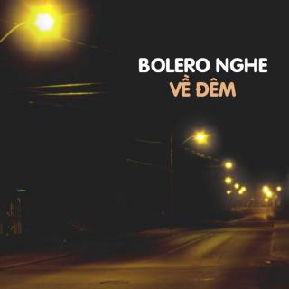 Nhạc Bolero Nghe Về Đêm - Various Artists