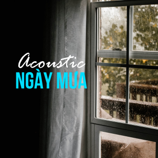 Acoustic Ngày Mưa - Various Artists