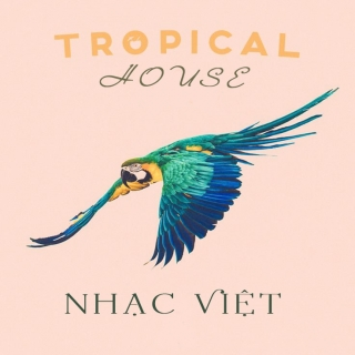 Những Bài Hát Tropical House Việt Hay Nhất - Various Artists