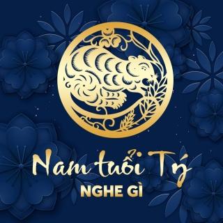 Nam Tuổi Tý Nghe Gì? - Various Artists