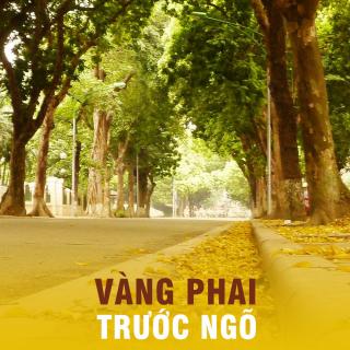 Vàng Phai Trước Ngõ (Tuyển Tập Nhạc Trịnh) - Various Artists