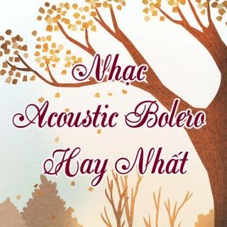 Nhạc Acoustic Bolero Hay Nhất - Various Artists