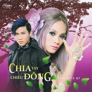 Top Hits 67 - Chia Tay Chiều Đông - Various Artists