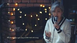 Phai Dấu Cuộc Tình - Vicky Nhung