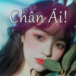 Chân Ái - Various Artists