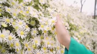 Mùa Xuân Đầu Tiên - Hà Vân