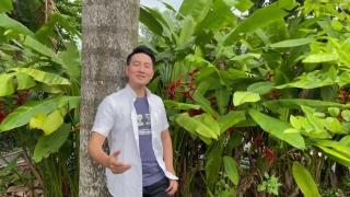 Thành Phố Tình Yêu Và Nỗi Nhớ - Nguyễn Phi Hùng