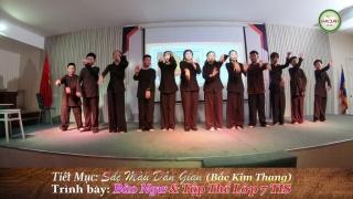 Bắc Kim Thang - Bé Bào Ngư, Various Artists