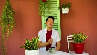 Bao La Những Trái Tim Hồng - Nguyễn Phi Hùng