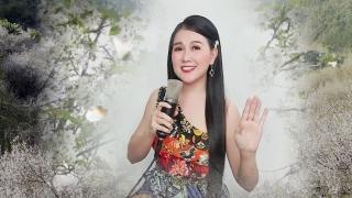 Gặp Nhau Giữa Rừng Mơ (Live) - Lê Như